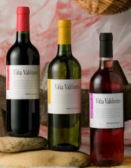 01_viña-valdoreo-3_r