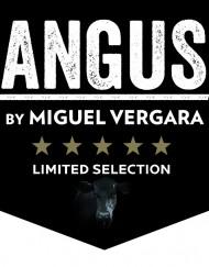 Angus Limited logo